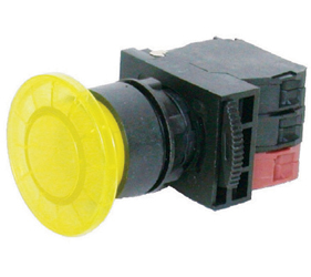 Switches and Lamps - Switches - DLB22-M11RI