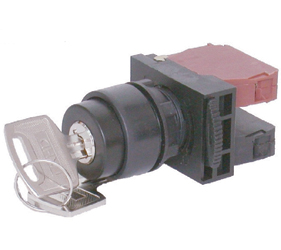 Switches and Lamps - Switches - DSS22-K211B