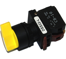 Switches and Lamps - Switches - DSS22-L020Y