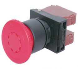Switches and Lamps - Switches - DPB22-R01R
